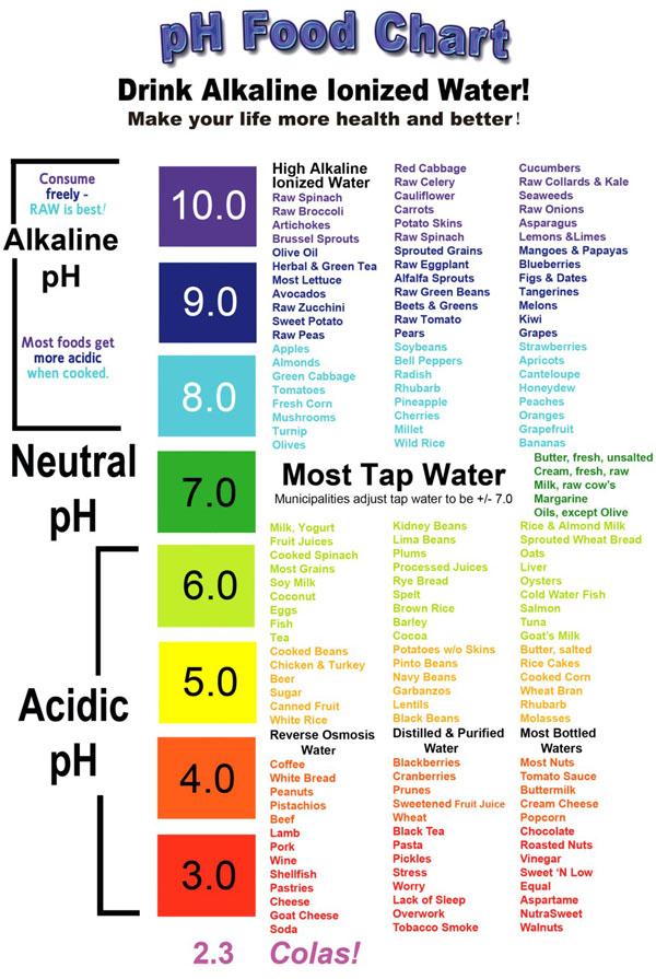 Acid Base List Food